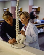 Doctor Examining Model of Spine