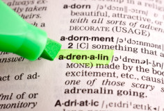 photodune-4022204-adrenalin-xs