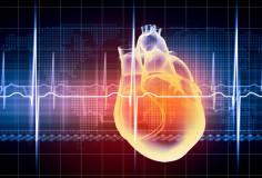 photodune-4949496-human-heart-beats-xs