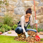 Calorie Burn: Fall Yard Chores