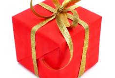 photodune-6188088-gift-xs
