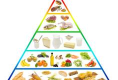 photodune-2959719-food-pyramid-xs