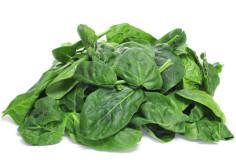 photodune-3919478-spinach-xs