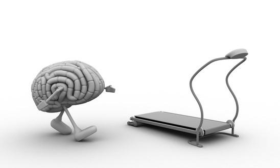 photodune-5729682-brain-xs
