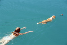 photodune-311921-young-woman-swimming-with-dog-xs