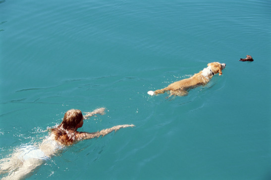 Young woman swimming with dog,
