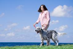 photodune-1279530-walking-the-dog-xs