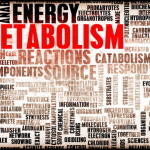 Binge-eating, Your Metabolism and Your Workout