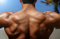 back of bodybuilder
