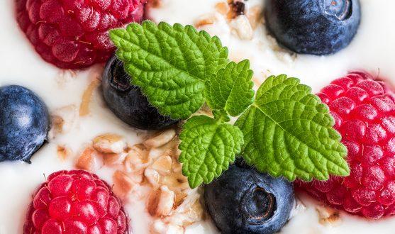 Yogurt with Whole Fresh Blueberries, Raspberries, Oatmeal and Melissa. Macro Detail Closeup.