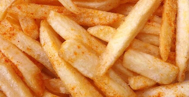 french-fries-1351067_640